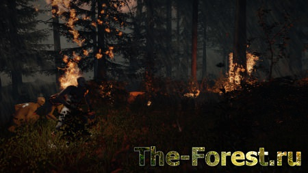 Обзоры The Forest